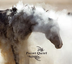 Point Quiet album cover